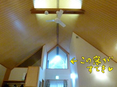 natutabi20.jpg