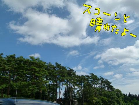 natutabi36.jpg