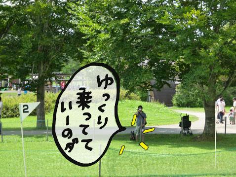 natutabi47.jpg