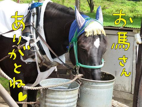 natutabi48.jpg