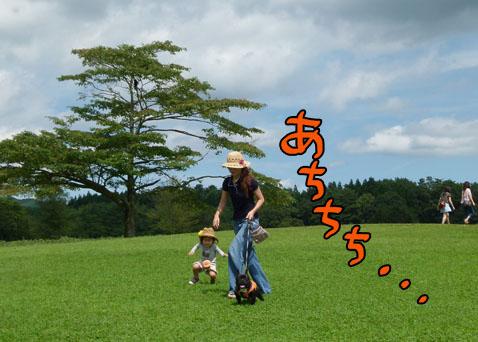 natutabi56.jpg