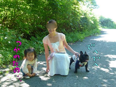 natutabi76.jpg