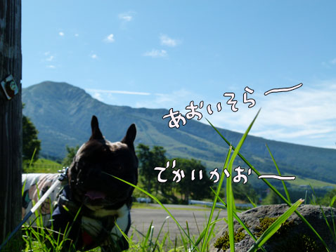 natutabi78.jpg