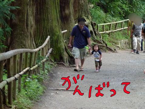 natutabi8.jpg