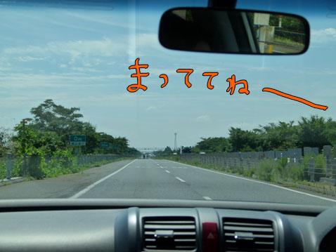 natutabi80.jpg