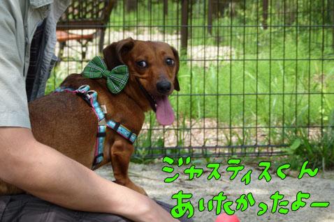 natutabi87.jpg