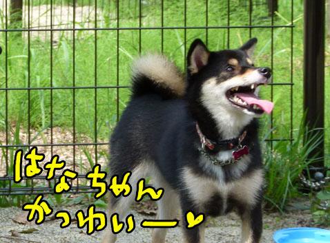 natutabi89.jpg
