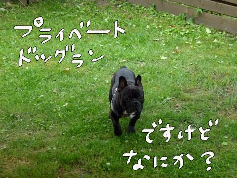 natutabi90.jpg