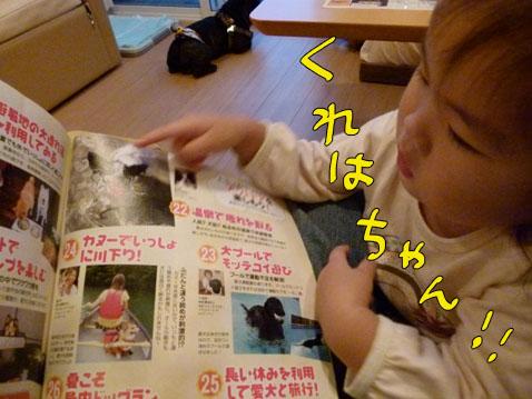 natutabi95.jpg