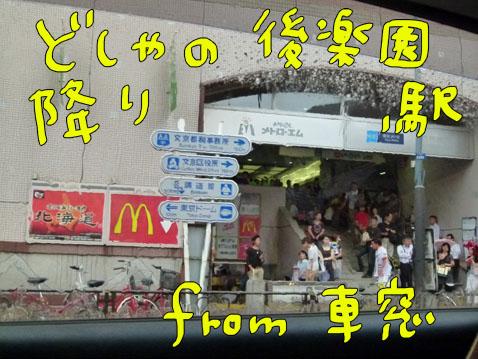 taibo2.jpg
