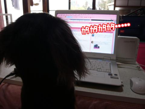 2011.02.26☆パソコン1☆