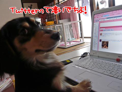 2011.02.26☆パソコン3☆