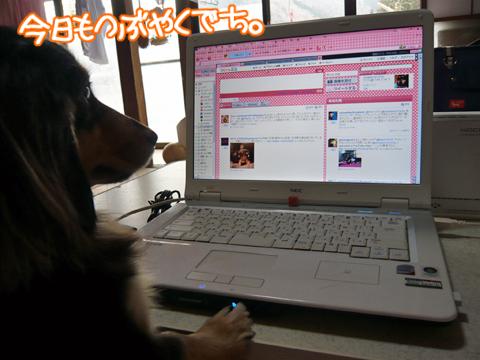 2011.02.26☆パソコン2☆