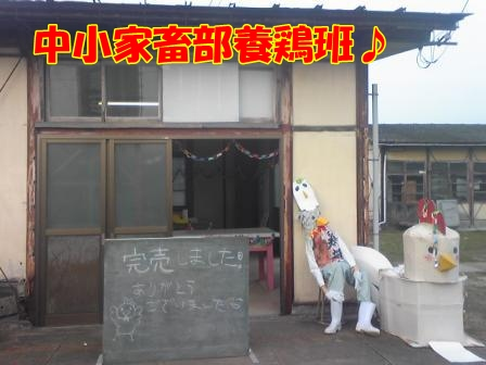 2010.11.7 農芸祭!3