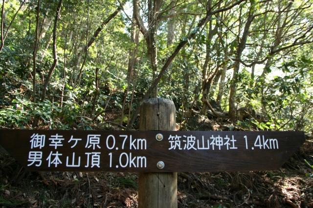 筑波山13