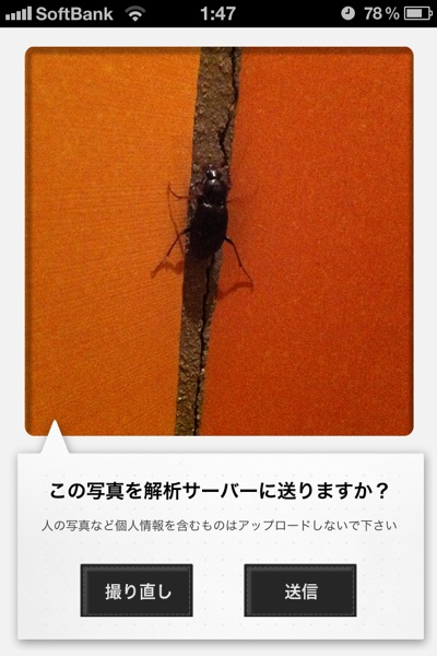 fc2blog_201211281838218b8.jpg