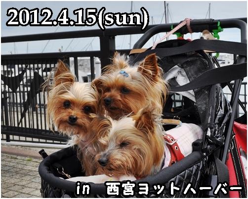 10_20120415222216.jpg