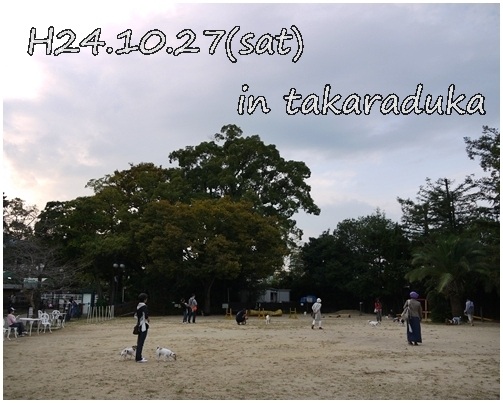 10_20121031015659.jpg