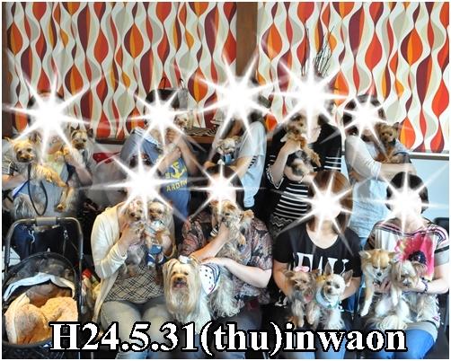 15_20120625233310.jpg