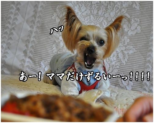 16_20120717220855.jpg