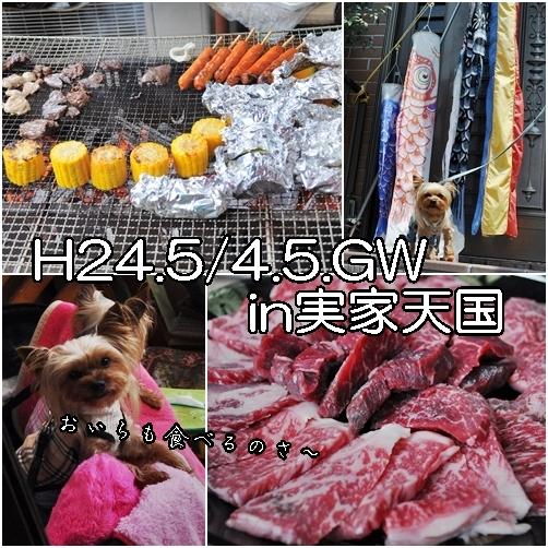 1_20120515073431.jpg