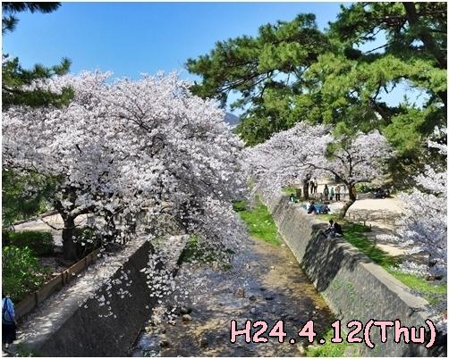 1_20120525231551.jpg