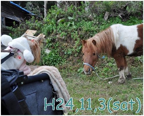 1_20121130224356.jpg