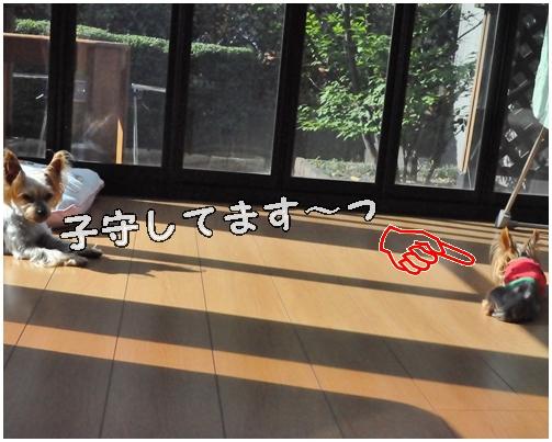 30_20120806232416.jpg