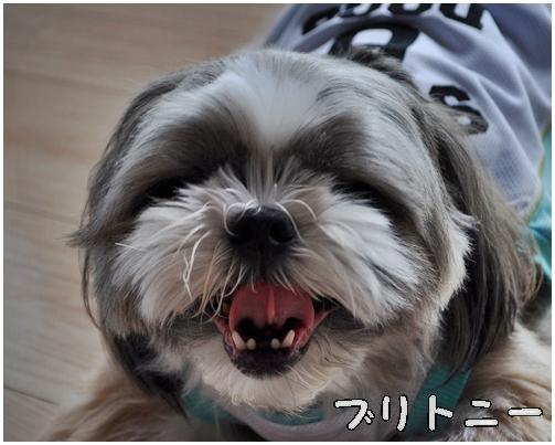 3_20120807064037.jpg