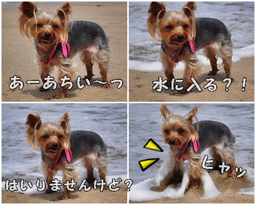 7_20120806232153.jpg