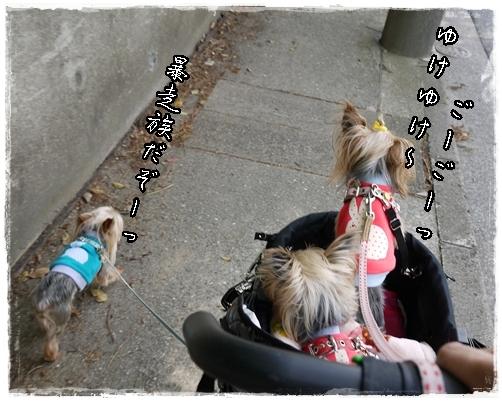 8_20120518073047.jpg