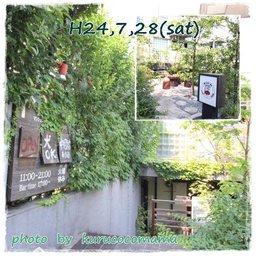 8_20121211221136.jpg