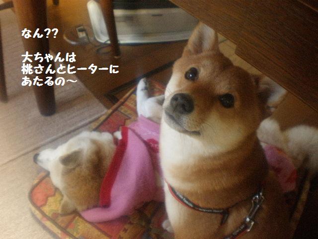 大ちゃんと桃2