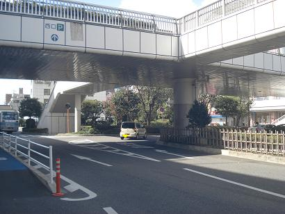 DSC00746-1.jpg