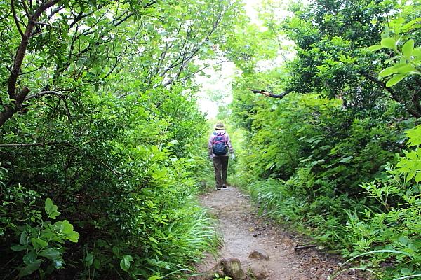 14栗駒山登山5