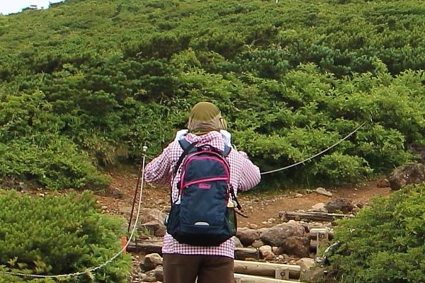 14栗駒山登山24