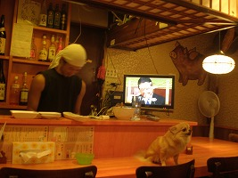 asagaya-shinobibuta92.jpg