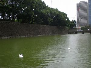 chiyodaku-koukyo83.jpg