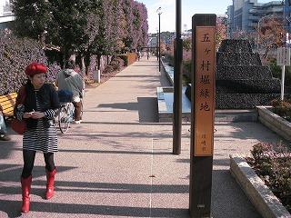 kawasaki-street10.jpg