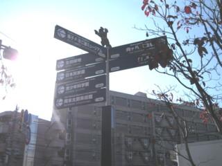 kawasaki-street28.jpg