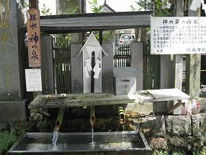 kumamoto-asozinnjya4.jpg