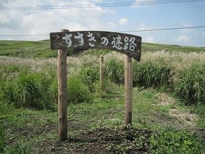 kumamoto-daikanbou3.jpg