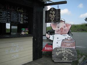 kumamoto-pig-fluke3.jpg