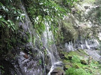 takachiho-gorge33.jpg