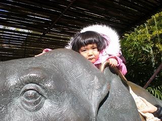 ueno-zoo102.jpg