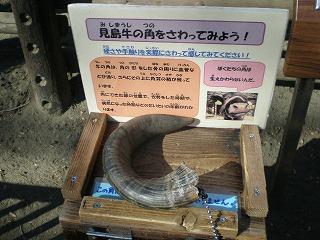 ueno-zoo127.jpg
