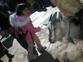 ueno-zoo128.jpg
