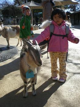 ueno-zoo130.jpg