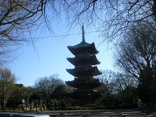 ueno-zoo155.jpg