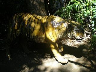 ueno-zoo82.jpg